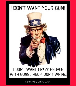 Gun Control Quotes Entrancing Quotes And Pictures  Gun Control Rights And Responsibilties
